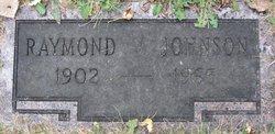 Raymond V Johnson