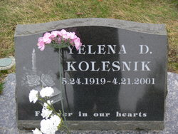 Yelena D Kolesnik