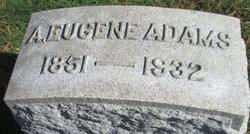 Aaron Eugene Adams