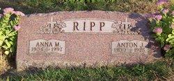 "Anna M ""Annie"" <I>Laufenberg</I> Ripp"