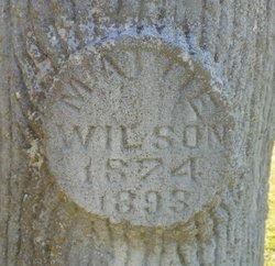 Mattie Wilson