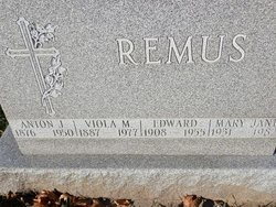 Anton L Remus