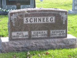 Anthony Schneeg
