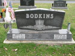 Elvira K. <I>Otte</I> Bodkins