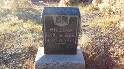 William Vivian