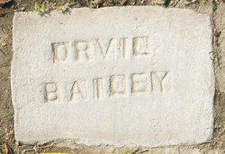 Orvil Loyd Bailey