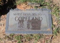 Mary Elva <I>Wilson</I> Copeland