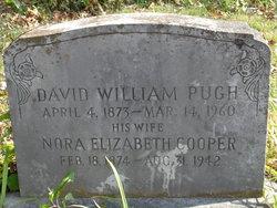 David William Pugh