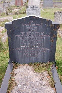 Arthur George Bicknell