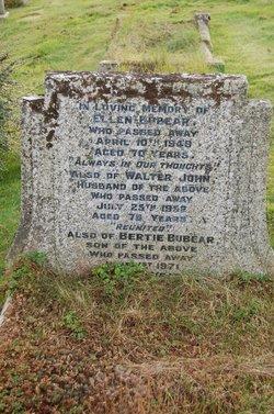 Bertie Bubear