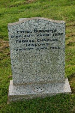 Thomas Charles Burrows
