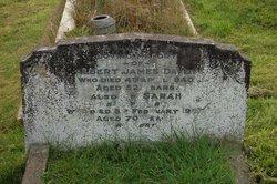 Albert James Davey