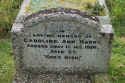 Caroline Ann Harry