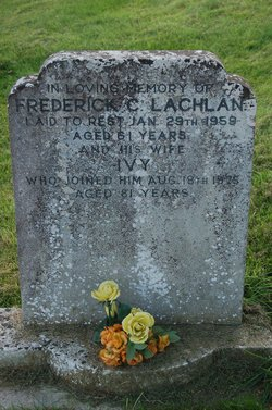 Ivy Lachlan