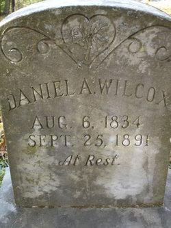 Daniel A Wilcox