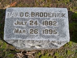 David C Broderick