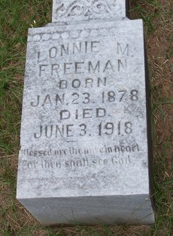 Lonnie M. Freeman