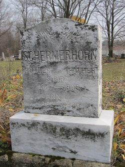 Ann L Schermerhorn