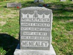 Mary J <I>Lusby</I> McNealey