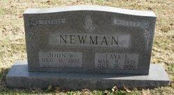 Faye L. <I>Taylor</I> Newman