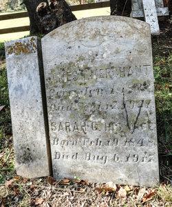 Sarah Catherine <I>McDaniel</I> Merchant
