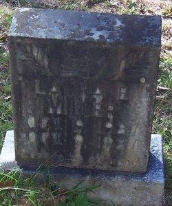 Laura E. Miller