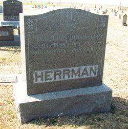 Martin Herrman