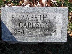Elizabeth A Carlson