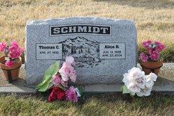 Alice R <I>Turner</I> Schmidt