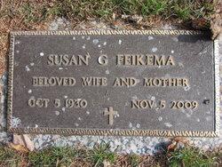 Susan G Feikema