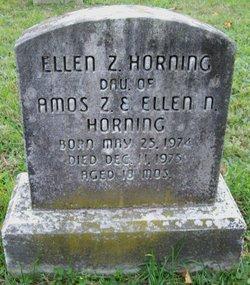 Ellen Z Horning