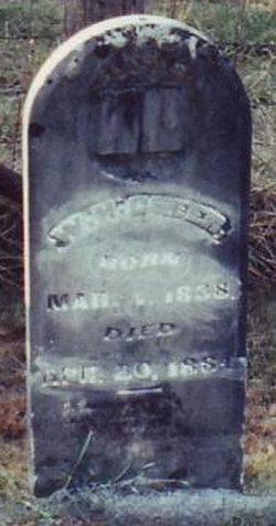 William Henry Greer
