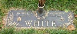 Timothy J White