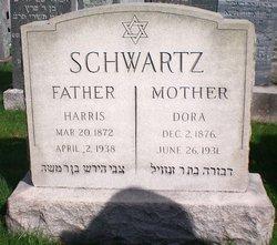 Dora Schwartz
