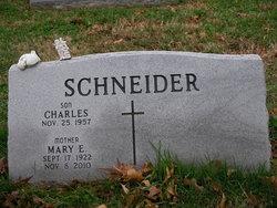 Mary Elizabeth <I>Schook</I> Schneider