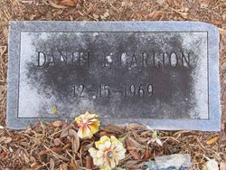 Daniel L Carlton