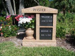 William J Pfister