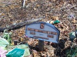 Dessie Annette <I>Baker</I> Bush