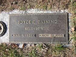 Joyce C Daining