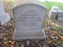 Alice Clothier