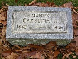 Carolina H Webster