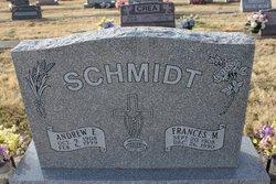 Andrew E Schmidt