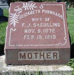Elizabeth <I>Purnhage</I> Saeugling
