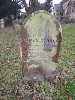 Ann Stoner