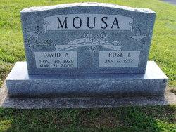 David L Mousa