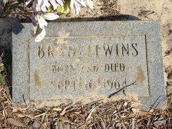 Twin Baby Brady