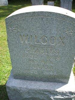 Louisa Wilcox