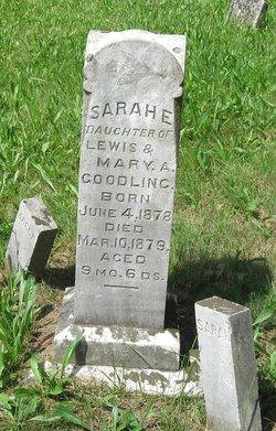 Sarah E. Goodling