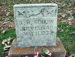 Robert Hardin Goodin