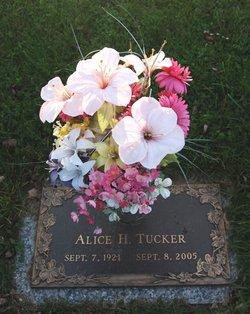 Alice H Tucker